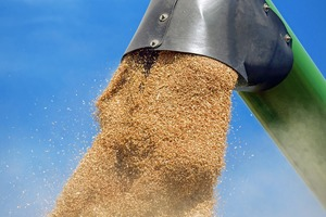 Level sensors in grain handling